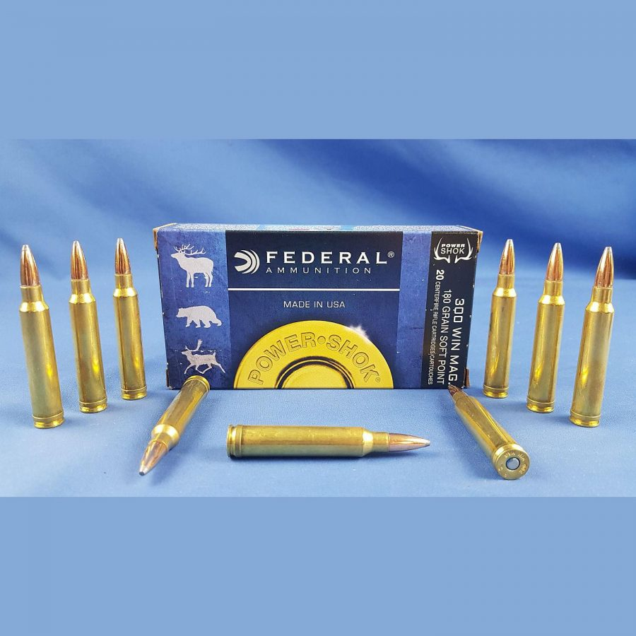 Federal 300Win Mag 180grs